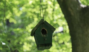 What will an empty nest home feel like?