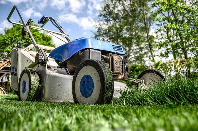 College Professor Warns: How Not to Be a Lawn Mower Parent