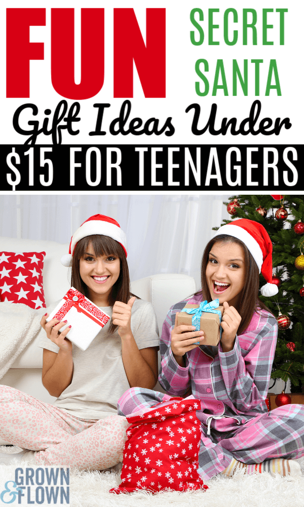Holiday 2020 Secret Santa Gifts Under 15 That Teens Will Love