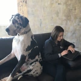 dog with teen on couch